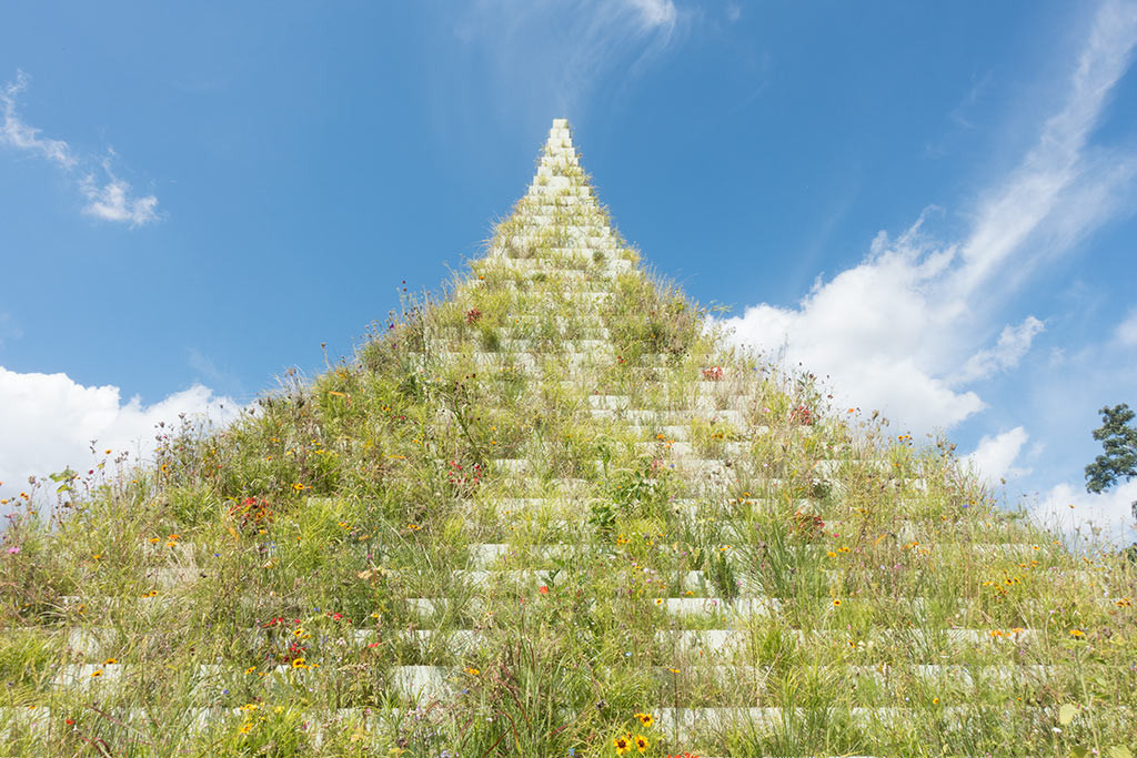 The Living Pyramid (2015/2017), Flowers, grasses, soil, wood, and paint, 9 × 9 × 9 m, Originally commissioned and presented by Socrates Sculpture Park, New York